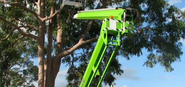 Tree Cutting In Process With the Use Of An Excavator
