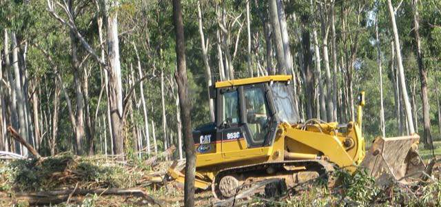 Heavy Equipment Tree Removal Service