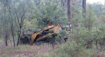 Excavator Clearing Trees