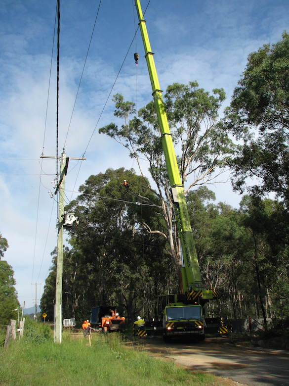 Big Crane Besides A Tall Tree & Electric Pools