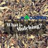 Mulching-