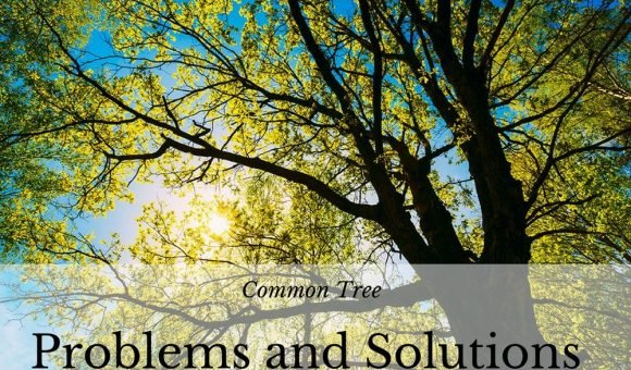 Common Tree Problems and Solutions.JK