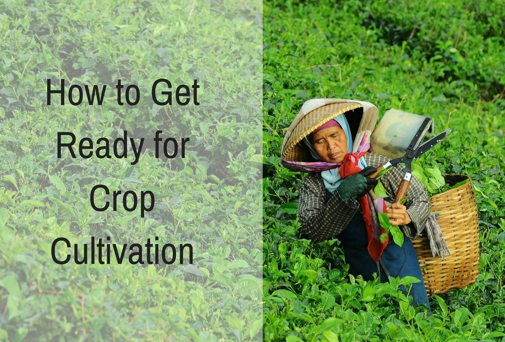 How to Get Ready for Crop Cultivation