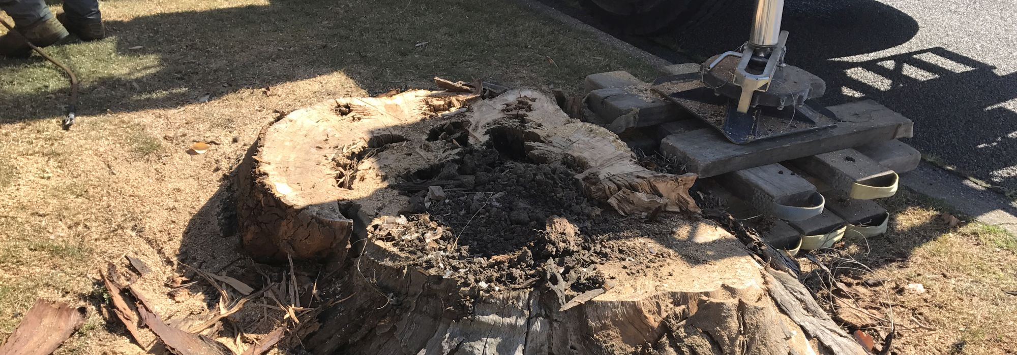 stump-removal-by-jk-cooper-tree-services